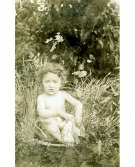 Bébé nu assis dans un panier dans un champ