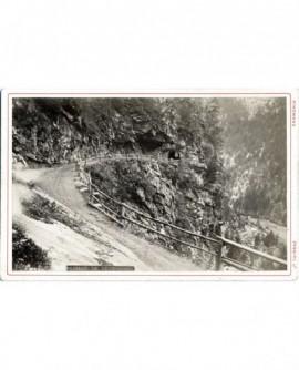 Vallée de Chamonix: passage de Tête noire