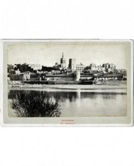 Vue du rocher des Doms à Avignon, prise de la rive droite