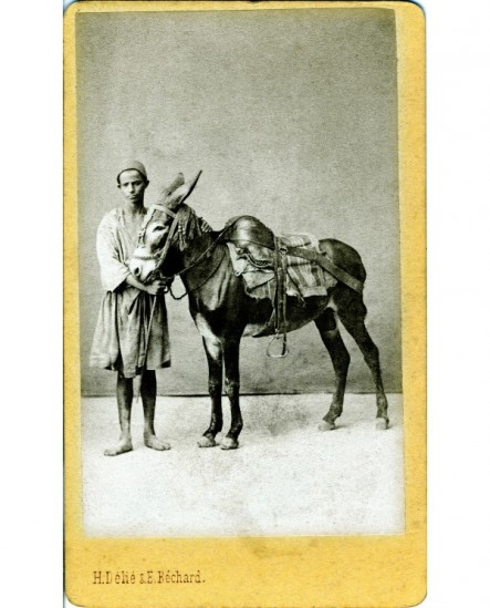 Jeune fellah en tarbouche tenant un âne