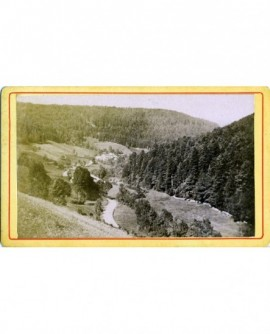 Paysage de la forêt vosgienne (région de Plombières)