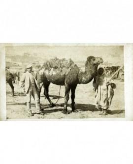 Homme (européen) en casquette, dromadaire et de son chamelier arabe