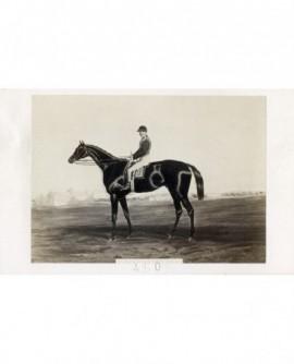 Peinture d'un cheval et de son cavalier