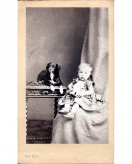Bébé en robe à carreaux assis, chien couché sur une table