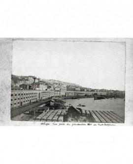 Vue générale d'Alger