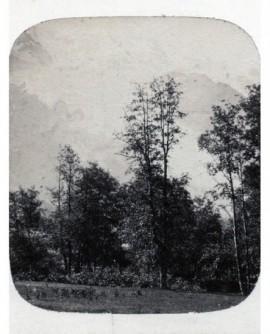 Paysage de la vallée de Chamoune (b)