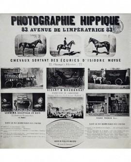 Document publicitaire du studio hyppique Delton