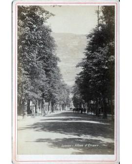 Ville de Luchon. Allée d'Etigny