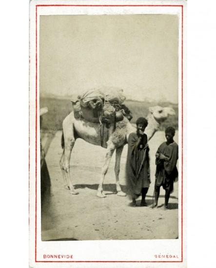Nomades touareg avec un dromadaire chargé