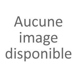 Vue générale de la ville de Cannes (Alpes-Maritimes).